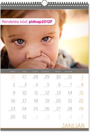 pldnap2012f1.jpg